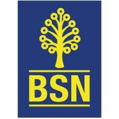 BSN Launches Batman Visa Debit Card